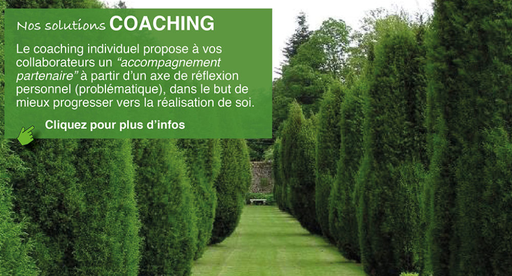 slider-coaching